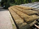 Rákosová střecha ZOO Brno